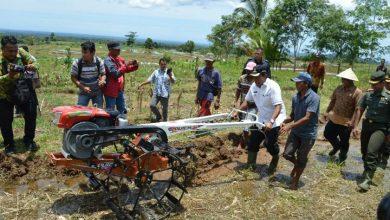 Photo of Mian: Kami akan Terus Cari Solusi Atasi Masalah Petani