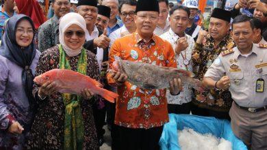 Photo of Pemerintah Provinsi Bengkulu Launching Ekspor Komoditas Unggulan