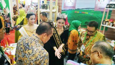 Photo of Diserbu, Stand Kabupaten Kepahiang Menarik Perhatian