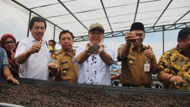 Photo of Tingkatkan Kesejateraan Petani, Resi Gudang Kopi Kepahiang Beroperasi