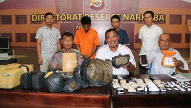 Photo of Tangkapan Besar, 40 Kilogram Ganja Dari Aceh Diamankan Polda Bengkulu