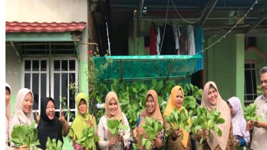 Photo of Pengabdian Masyarakat, Poltekkes Kemenkes  Bengkulu Edukasi Pemanfaatan Tanaman Hidroponik