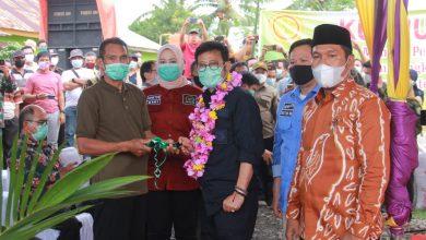 Photo of Mentan RI : Provinsi Bengkulu Berpotensi Besar Jadi Lumbung Padi Nasional