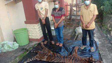 Photo of Lakukan Transaksi Organ dan Kulit Harimau, 3 Pelaku Ditangkap Polisi