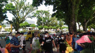 Photo of Pemkot Percantik Kota, Tanam 2500 Bibit Bunga di Jalan S. Parman